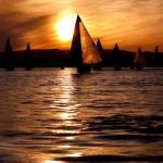 Small Sail Silhouette